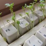 keyboard_1438873512-150x150