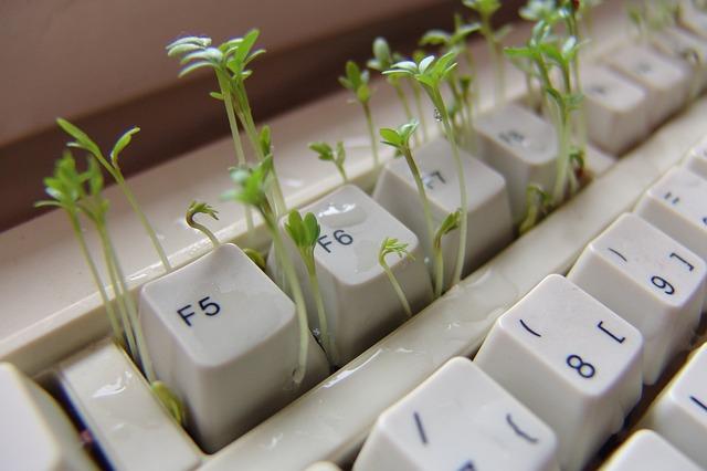keyboard_1438873512