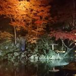 kenrokuen_yoru